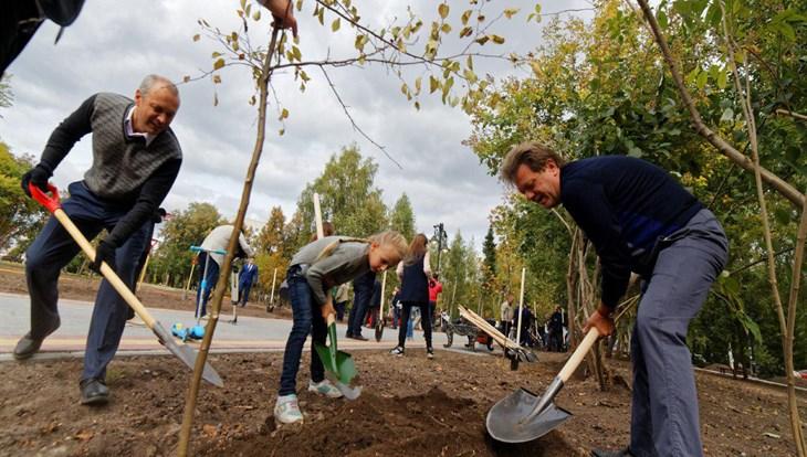 Масштабная реконструкция Новособорной завершилась посадкой саженцев