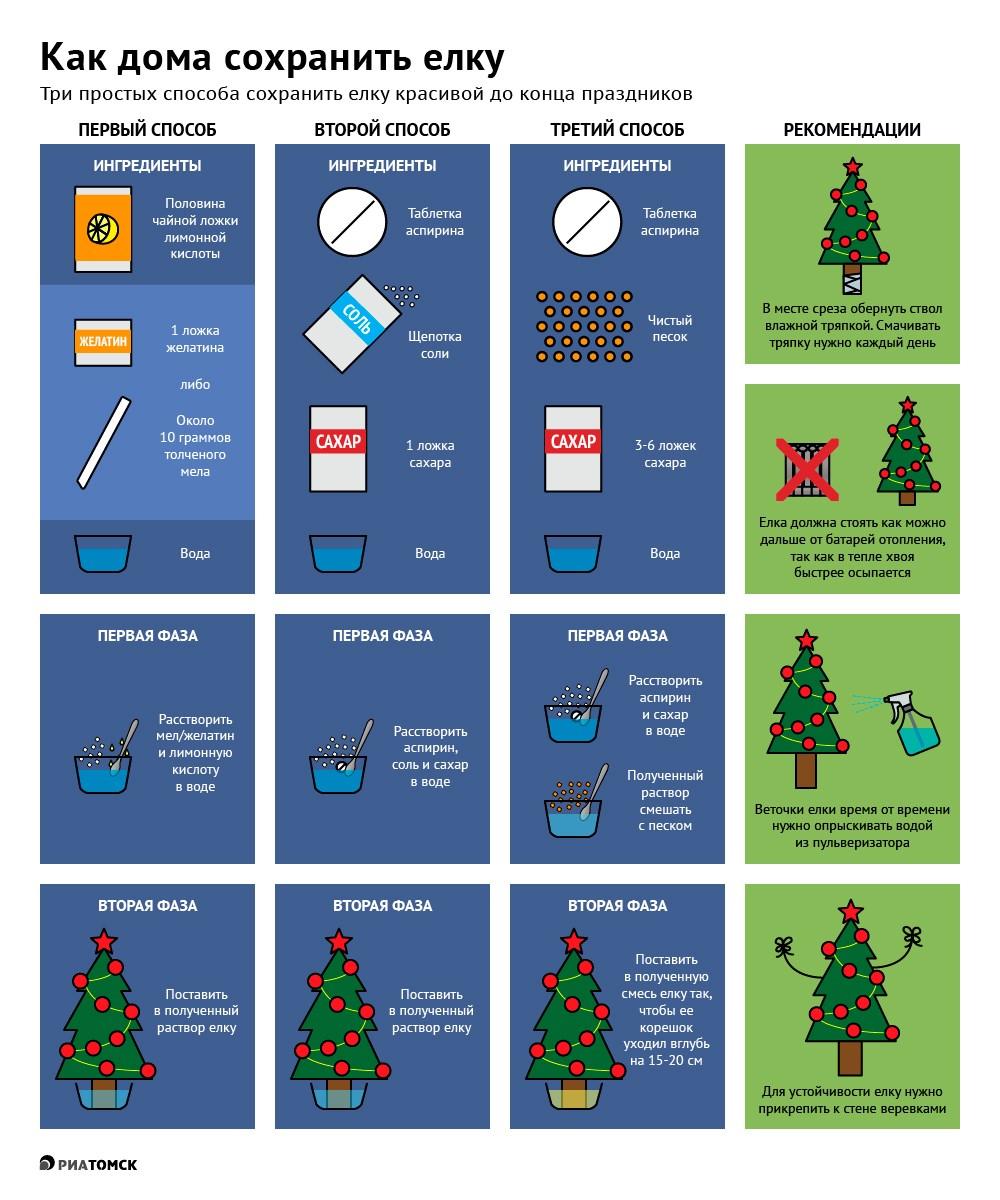 Специально для тех, кто любит создать дома новогоднюю атмосферу пораньше и сохранить ее подольше, рассказываем, как сберечь главный атрибут праздника – елку – ароматной и красивой. Смотрите инфографику РИА Томск.