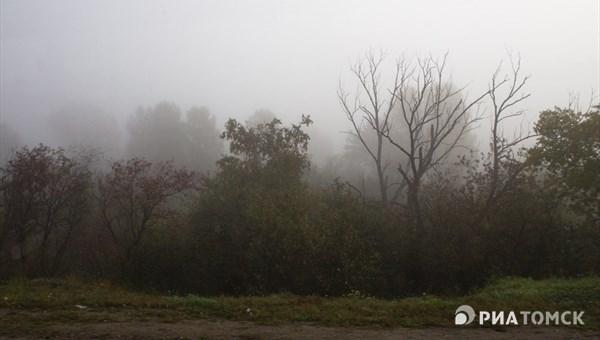 Из-за тумана летевшие вТомск самолеты были отправлены на остальные аэропорты