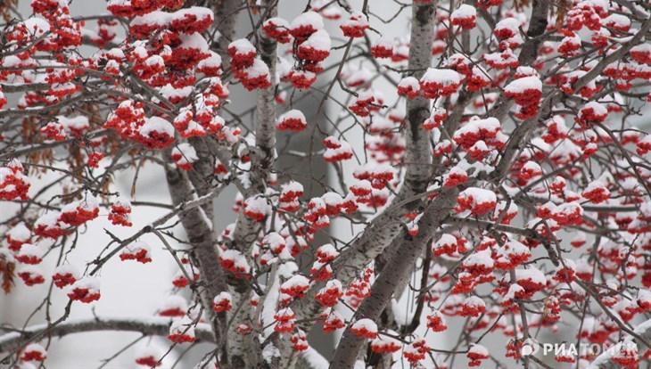 Синоптики: завтра, 29октября вБашкирии снег поменяют дожди