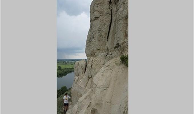 ВКрасноярском крае найдено скопление костей динозавров имамонтов