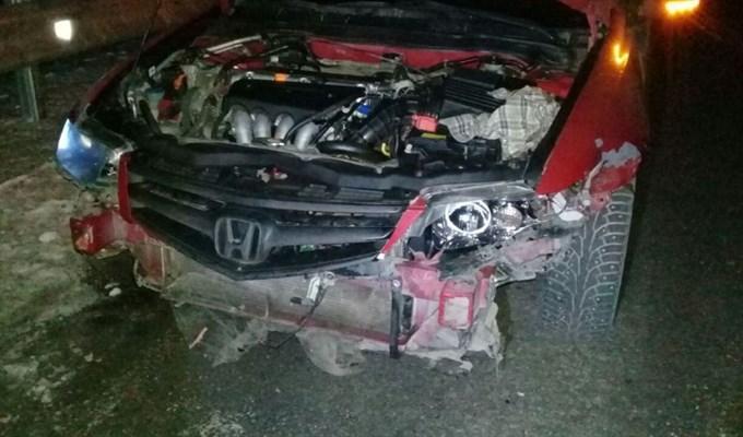 Автомобиль сбил четырех коней вТомской области: животные погибли, шофёр травмирован