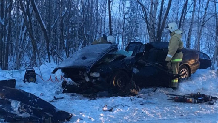 ВТомской области 2 человека погибли вДТП смикроавтобусом