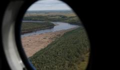 Все лесные пожары в Томской области потушены