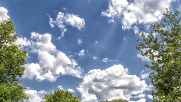 Тридцатиградусная жара ожидается в Томске во вторник