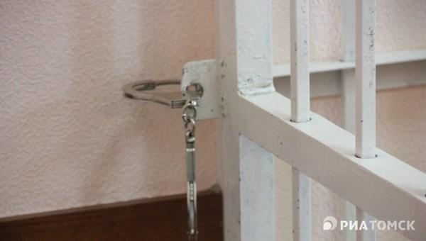 Томичка получила 2 месяца колонии за избиение полицейского на трассе
