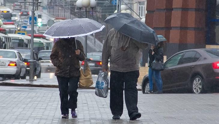 Дождь и порывистый ветер ожидаются в Томске в среду