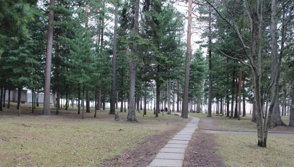 Власти направят еще 16 млн руб на обустройство Лагерного сада в Томске