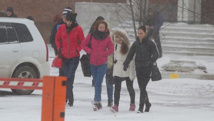 Синоптики обещают томичам в пятницу небольшой снег и ветер до 13 м/с