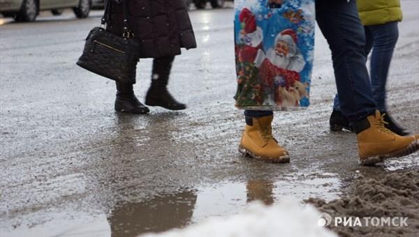 Мокрый снег и плюсовая температура ожидаются в понедельник в Томске