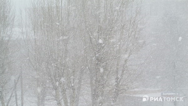 МЧС: шквалистый ветер ожидается в четверг в Томске и области
