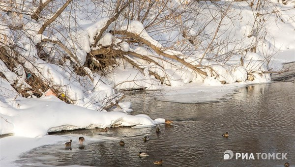 Минусовая температура ожидается в среду в Томске, возможен снег