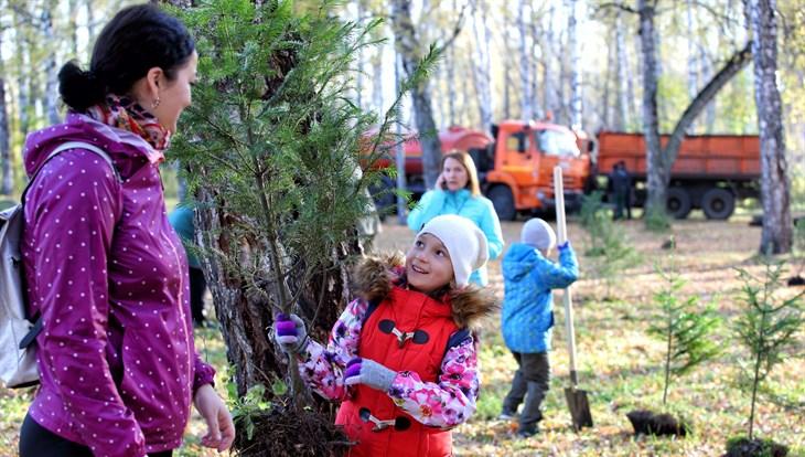 Специалисты высадят в 2020г в Томске 15,5 тыс деревьев и кустарников