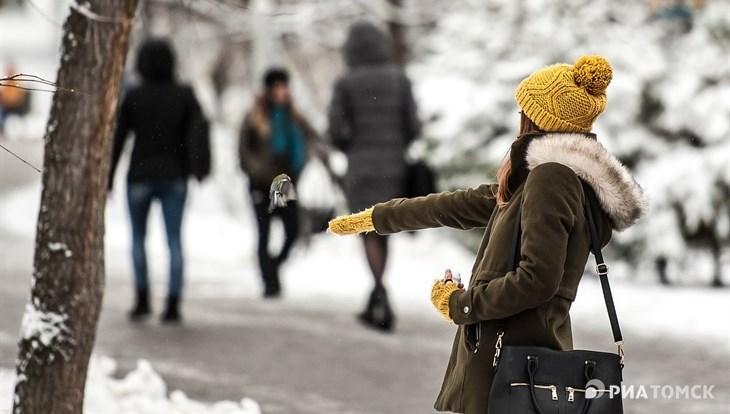 Теплая погода ожидается в Томске в понедельник