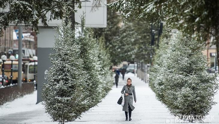 Небольшой снег возможен в Томске в среду днем