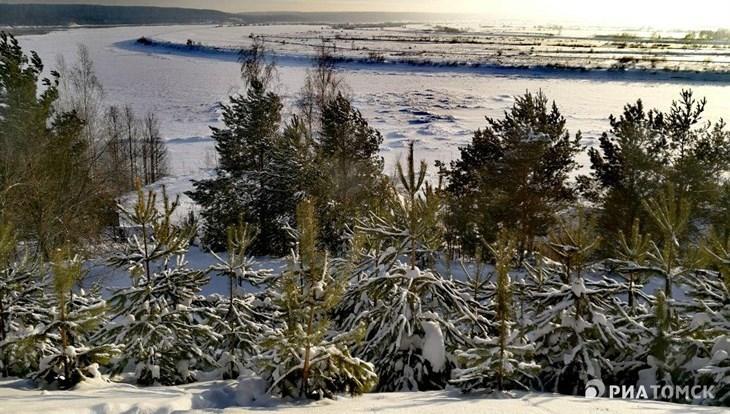 Небольшой мороз ожидается в Томске в понедельник, осадков не будет