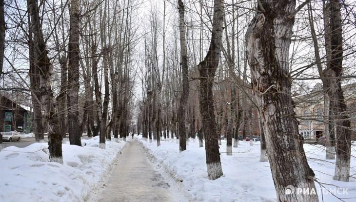 Понедельник в Томске будет теплым, но ветреным