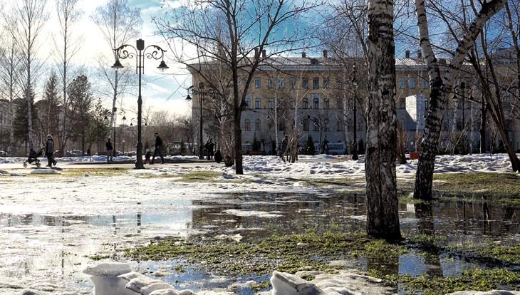 Синоптики обещают теплую сухую погоду в пятницу в Томске