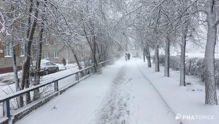 Небольшой снег и порывы ветра ожидают томичей в понедельник