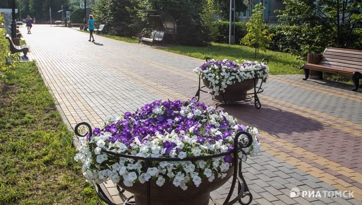 Жаркая и ветреная погода ожидается в Томске в Ильин день