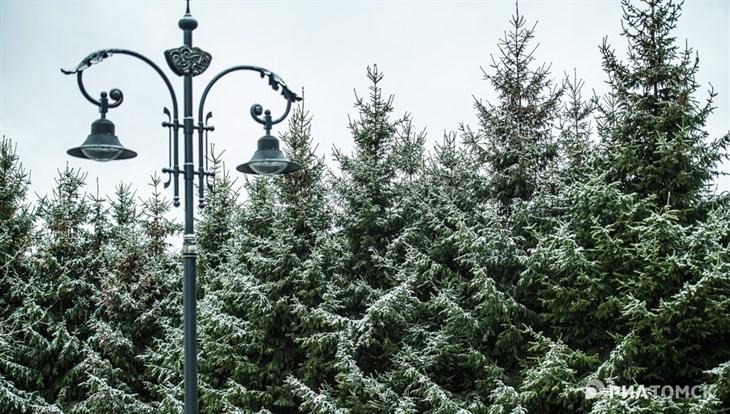 Снег, дождь и порывы ветра до 24 м/с ожидаются в Томске в пятницу