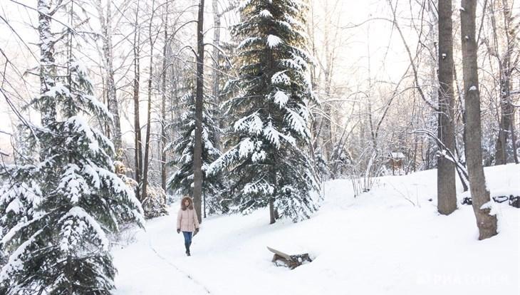 Небольшой снег и минус 7 градусов ожидается в пятницу днем в Томске