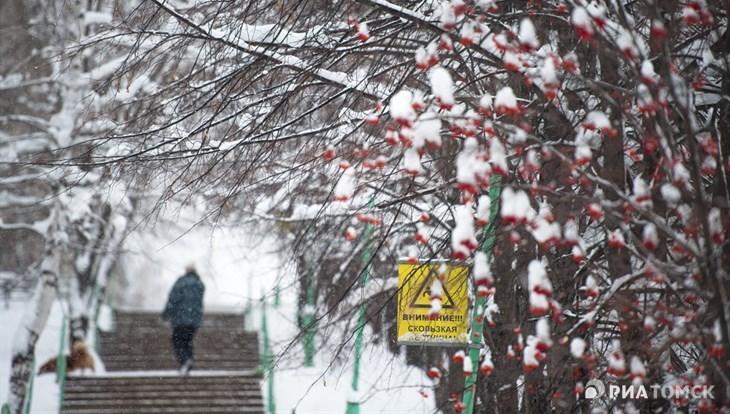 Небольшой снег и сильный ветер ожидаются в Томске в понедельник