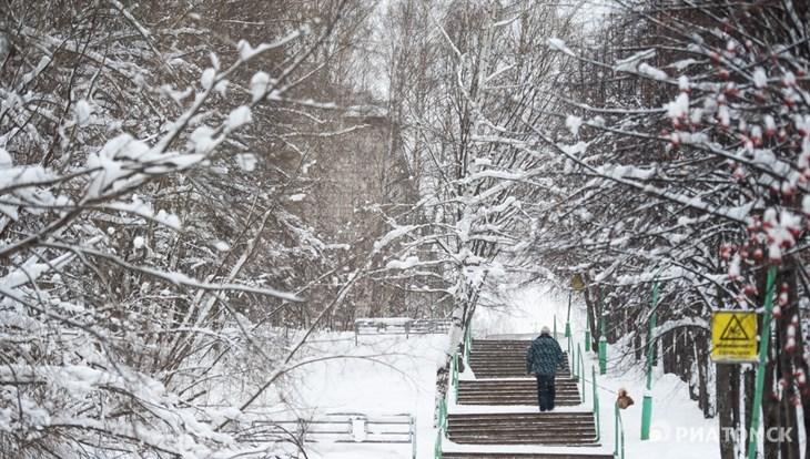 Синоптики прогнозируют снег и порывистый ветер в Томске в четверг