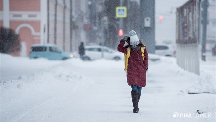 Легкий мороз и порывистый ветер ожидаются в Томске в понедельник
