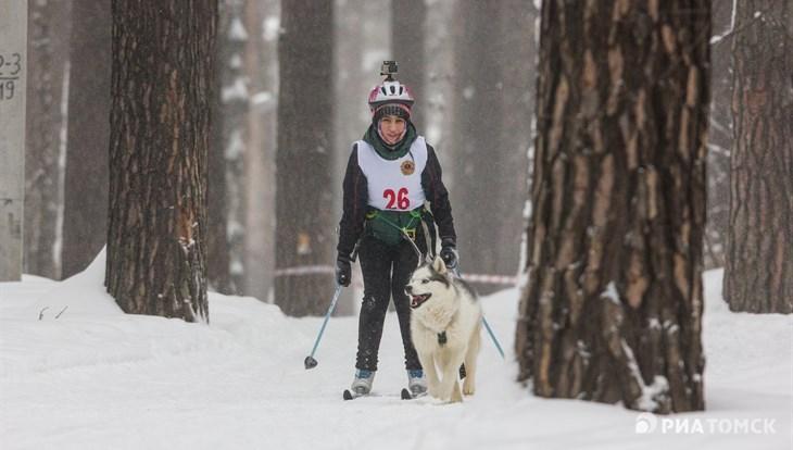Около 17 градусов ниже нуля ожидается в Томске в пятницу