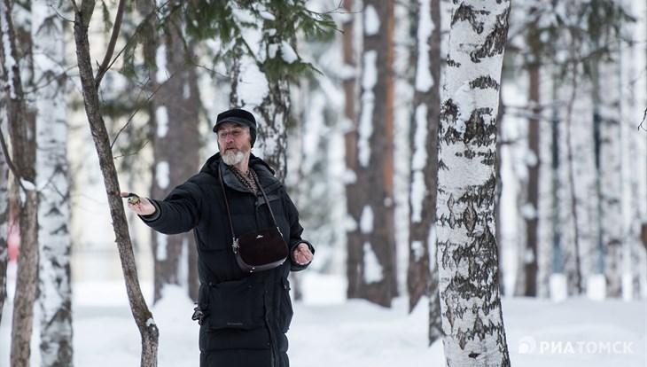 Теплая, но ветреная погода ожидается в Томске во вторник