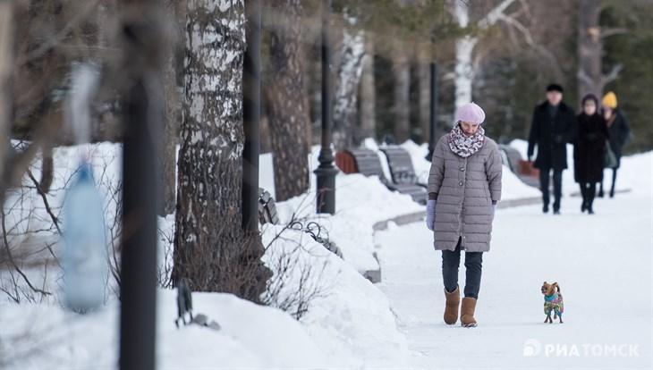 Теплая погода с умеренным ветром ожидается в Томске в понедельник