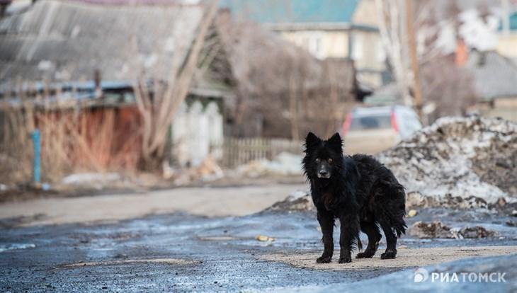 Среда в Томске ожидается прохладной