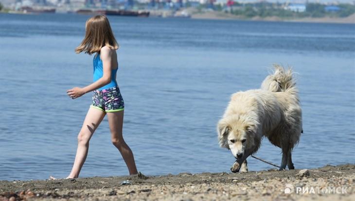 Синоптик: конец июля в Томской области будет теплым, но дождливым