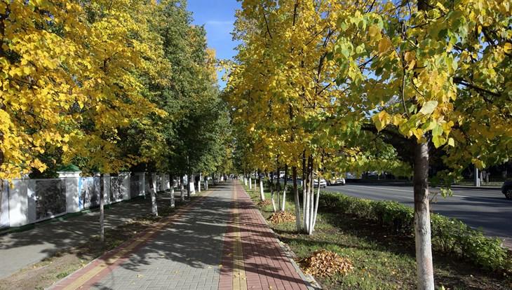 Около 10 градусов тепла ожидается в Томске во вторник