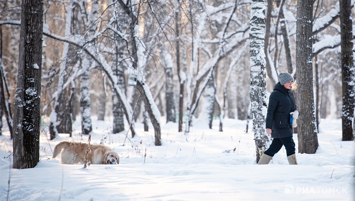 Минус 20 градусов и небольшой снег ожидают томичей в пятницу