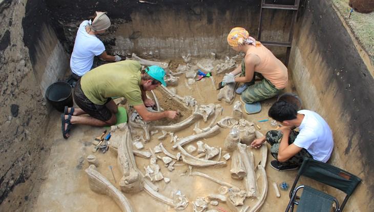 Палеонтологи ТГУ нашли культовый предмет возрастом более 19 тысяч лет