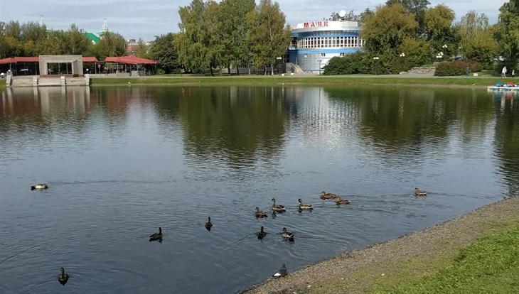 Теплая погода ожидается в Томске в пятницу, возможен небольшой дождь