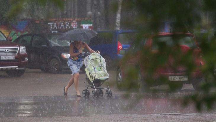МЧС: грозы с градом и сильным ветром ожидаются в Томске 27 и 28 июня
