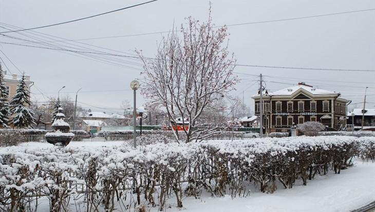Небольшой снег и порывистый ветер ожидаются в Томске во вторник