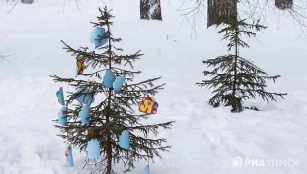 Дети могут украсить высаженные в Томске ели самодельными игрушками