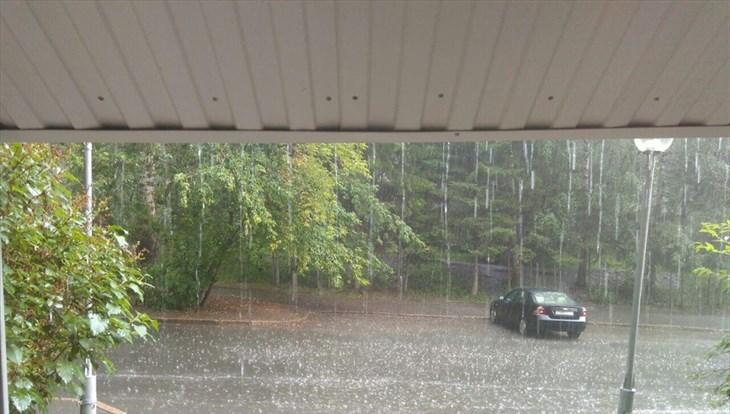 Дожди и грозы ожидаются в Томске в понедельник, возможен град