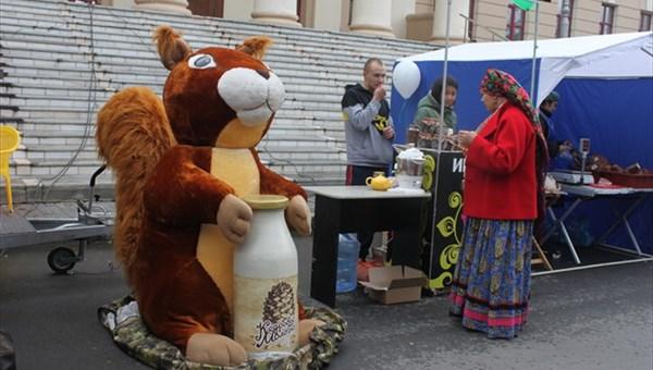 Неизвестные сломали и украли гигантскую белку с новогодней ярмарки в Томске