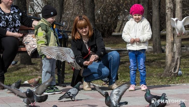 Синоптики прогнозируют прохладный и ветреный четверг в Томске