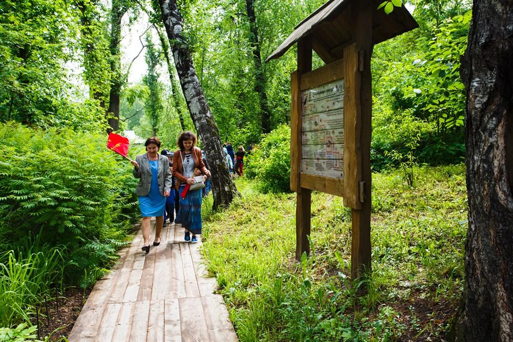Тропу начали создавать в 2012 году. Экскурсии для детей и школьников проводятся здесь с 2013-го. Первыми на тропе можно встретить цветы, которые особо ценятся в Сибири.