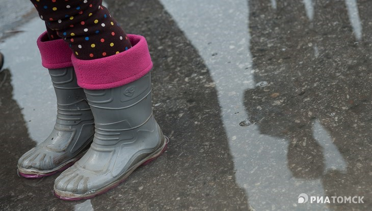 Небольшой дождь ожидается в четверг днем в Томске