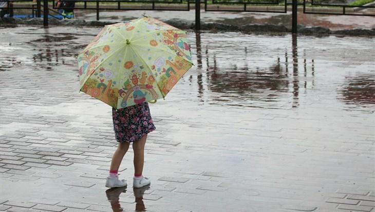 Дождь и порывистый ветер ожидаются в Томске в четверг, возможен град