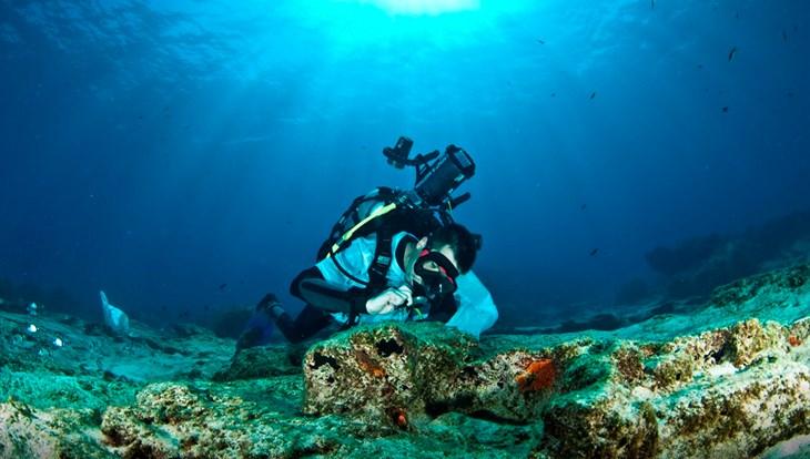 Биологи ТГУ исследовали экосистемы на побережье Египта