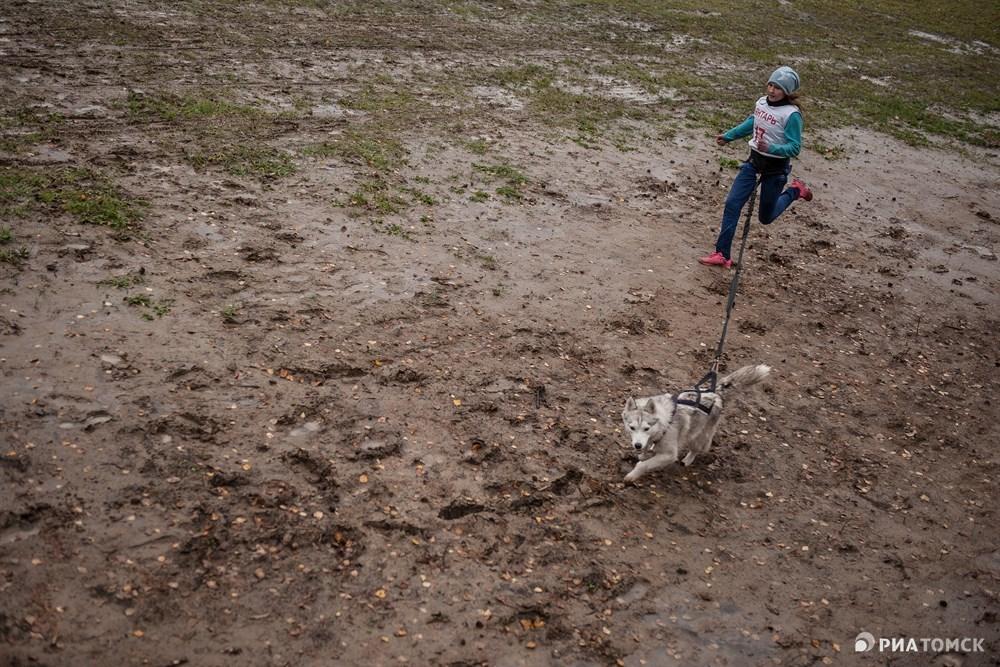 Все утро в Томске шел мокрый снег, поэтому преодолевать дистанцию было очень сложно - местами ноги и лапы утопали в грязи.