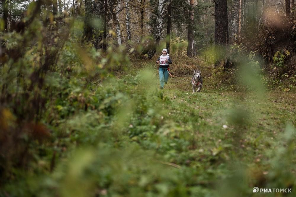 Дистанция проходила не только на открытом пространстве, но и по лесу.